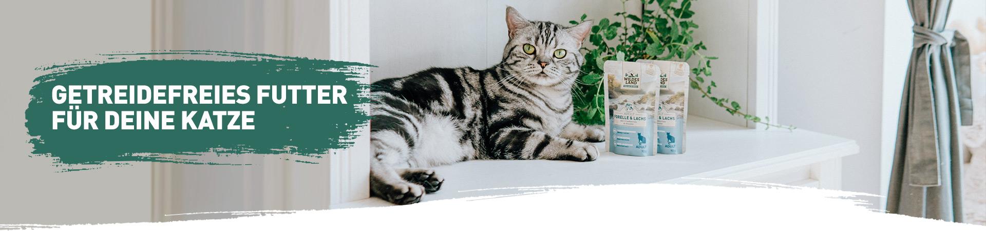Getreidefreies Futter-Katze